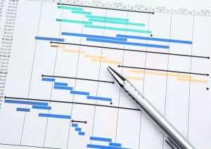 Pragmatyxs Project Management | Gantt Chart